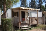 Rental - IDAHO 4 pers. with TV + place for 1 vehicle - Camping Les Palmiers