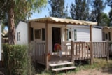 Rental - Idaho 4 Pers. + Place Per 1 Car Standard - Camping Les Palmiers