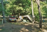 Pitch - Pitch Standard  For Tent + Car (Electricity 4 A Included) - Camping Piomboni SRL