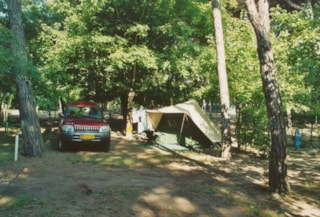 Pitch Standard  For Tent + Car (Electricity 4 A Included)