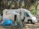 Pitch - Pitch Standard Camping-Car + Electricity 4 A - Camping Piomboni SRL