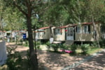 Locatifs - Mobilhome Luxe 6 pers. - CAMPING VILLAGE BADIACCIA
