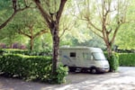 Pitch - Pitch Camping-car - PARCO DELLE PISCINE