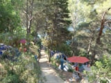 Pitch - Pitch Tent + electricity - Camping CALA LLEVADÓ ****