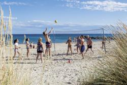 Entertainment organised Camping Sandaya Les Tamaris - Frontignan-Plage
