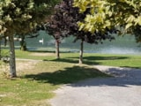 Pitch - Pitch package Comfort (car, tent or caravan or camping-car, with electricity) - Camping du Lac du Lit du Roi