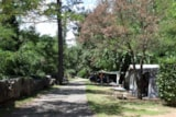 Pitch - Nature Package : Pitch + car + tent/caravan or camping-car - Camping DOMAINE DE GIL
