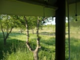 Rental - Cabanon (wooden) Nature - Camping Village Vacances Bagheera