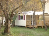 Rental - Mobile-Home  (1 Bedroom) - Camping Frédéric Mistral