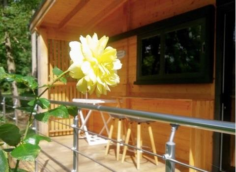 Accommodation - Chalet Laponia 25M² - Héliomonde