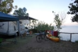 Pitch - Pitch for caravan - Holiday Village & Camping Nettuno
