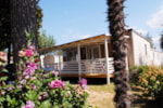 Rental - Mobile Home Viola - Villaggio Turistico EDEN