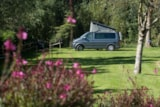 Pitch - Nature Package (1 Tent, Caravan Or Motorhome / 1 Car) - Flower Camping Les Nobis d'Anjou