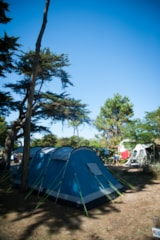 Pitch - Package A : Pitch  + Car - Camping Les Cyprès