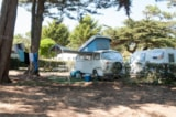 Pitch - Package B: Pitch + vehicle + electricity - Camping Les Cyprès