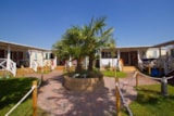 Rental - Mobile Home With 3 Bedrooms And 1 Bathroom - Camping Village Internazionale
