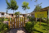 Rental - MOBILE HOME - Camping Village Internazionale