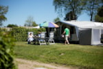 Pitch - Luxury camping plot 150 m² - Camping Hohenbusch