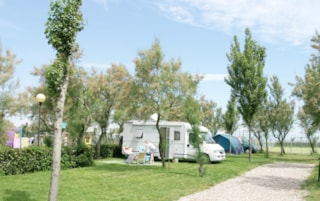 Pitch, tent, caravan or camping-car and car