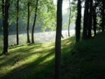 Beaches Flower Camping Des Gorges De L'aveyron - Saint Antonin Noble Val