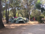 Pitch - Package Nature : Pitch   1 car   tent, caravan or camping-car - Camping Le Beau Vézé