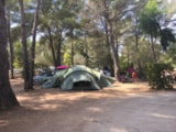 Pitch - Package Confort : Pitch   1 car   tent, caravan or camping-car   electricity (6A) - Camping Le Beau Vézé