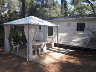 Mobil-Home  Mimosa 21M² (2 Bedrooms)