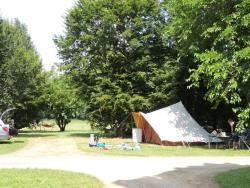 Pitch - Nature Package (1 tent, caravan or motorhome / 1 car) - Flower Camping Des Nauves