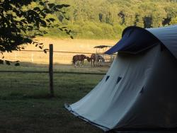 Pitch - Privilege Package (1 tent, caravan or motorhome / 1 car / electricity 10A) - Flower Camping Des Nauves