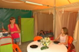 Rental - Furnished tent éco - 16 m² (2 bedrooms)sans sanitaire + terrasse - Flower CAMPING SAINT AMAND