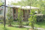 Rental - Mobile home Comfort+ 32 m² (3 bedrooms) with covered terrace - Flower CAMPING SAINT AMAND