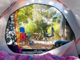 Pitch - Pitch tent or caravan +electricity 16A - Camping Club Le Marisol