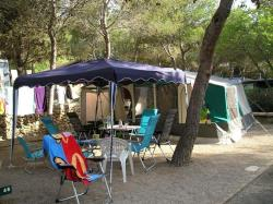 Pitch Offer +55 years old (1 car + 1 caravan/tent/motorhome + electricity + dog)
