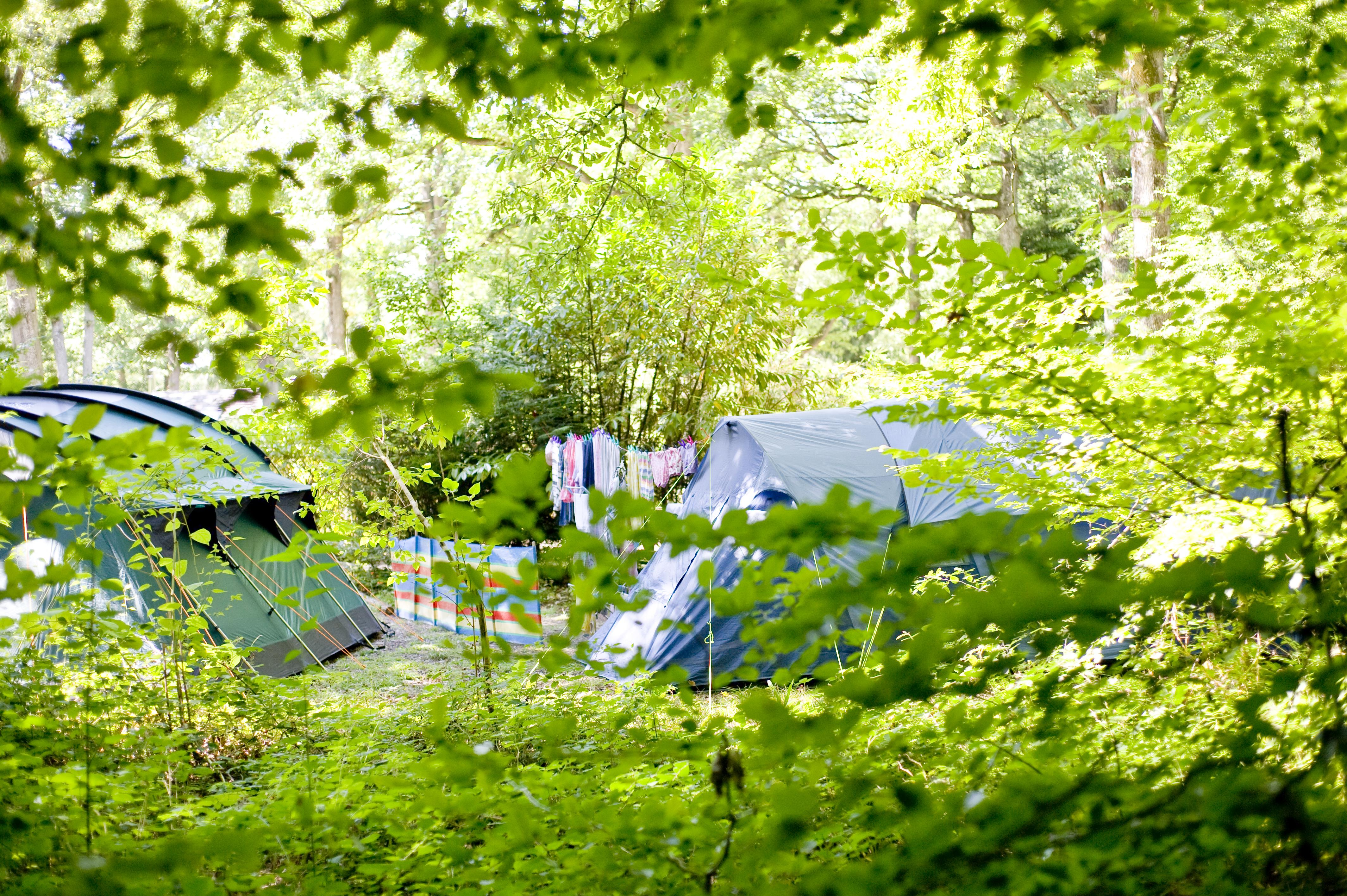 Emplacement - Emplacement Camping Confort Plus - Huttopia  Rambouillet