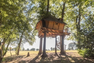 Butterfly Tree House
