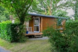 Rental - Chalet TRIANON n°1 20m² 1 bedroom + sheltered terrace - Camping de la Plage Bénodet