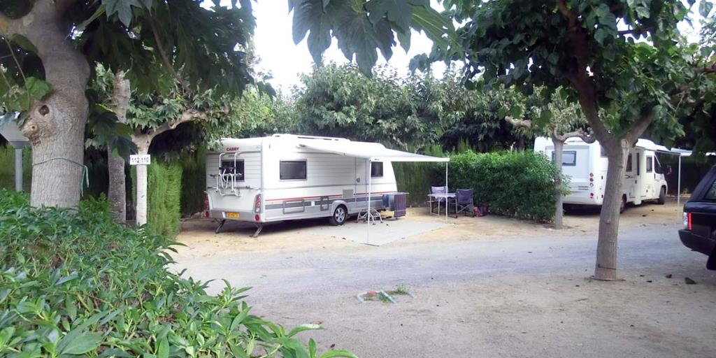 Pitch Premium+ : car + tent/caravan or camping-car + electricity 5A + water and drainage point