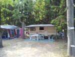 Pitch - Pitch electricity 10A : price for 1/2 pers, 1 car, 1 pitch (4 adults max) - CAMPING LE PARC