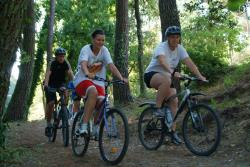 Leisure Activities Camping Les Pins De La Coubre - La Palmyre - Les Mathes
