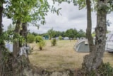 Pitch - Campingpitch including 2 people, electricity and car - RCN la Ferme du Latois