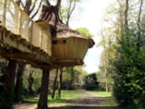 Rental - Tree House - 2 Bedrooms + 0 Bathroom - Insolite - Amac Camping La Grande Métairie