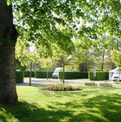 Pitch - Pitch + Car + Tent Or Caravan + Electricity - Camping de Vittel