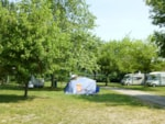 Standpladser - Camping pitch package with electricity - Camping Indigo Strasbourg