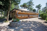 Pitch - Pitch Type A - Camping Village Mare Pineta