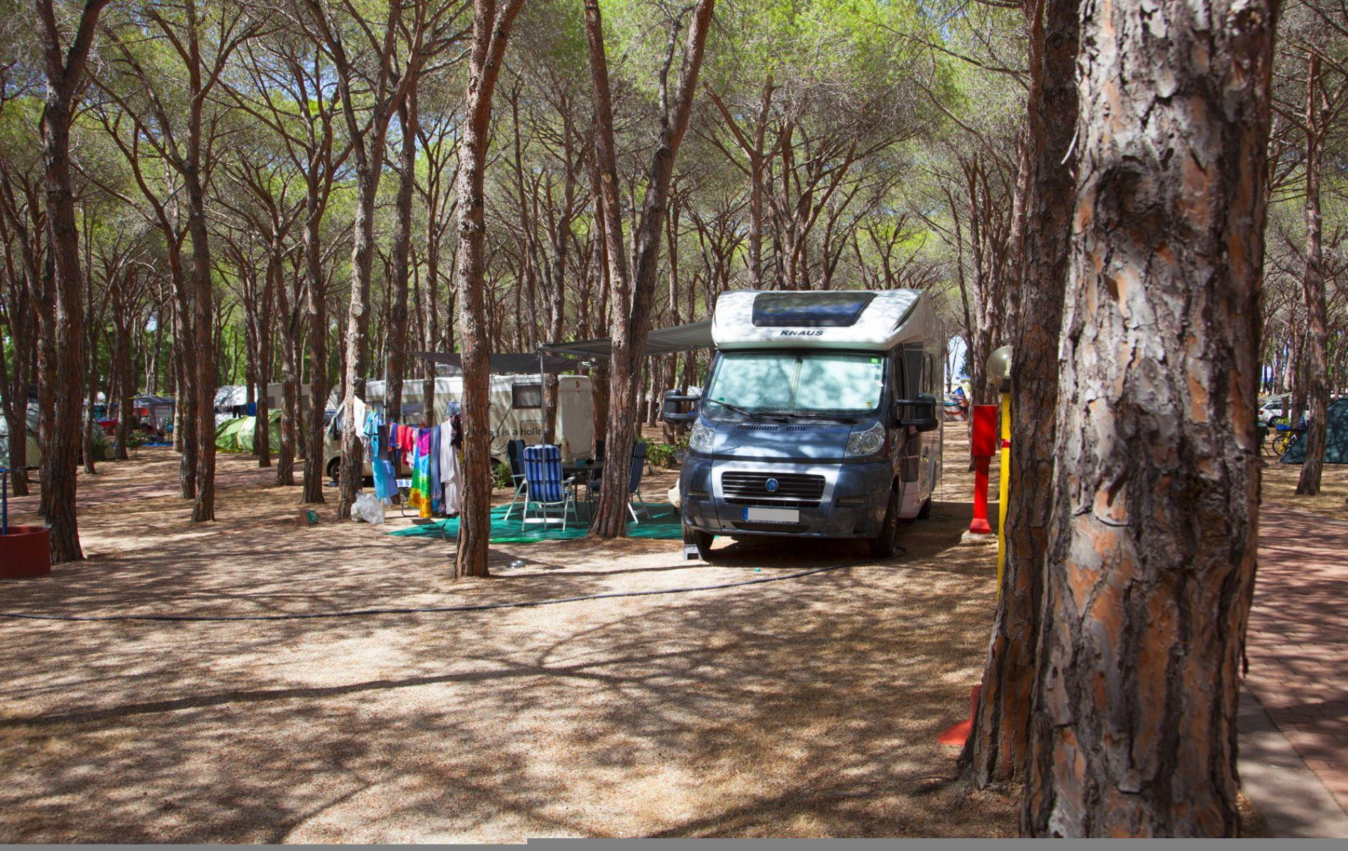 Emplacement - Emplacement Type B - Camping Baia Blu la Tortuga