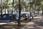Emplacement - Emplacement C - Camping Village Baia Blu la Tortuga