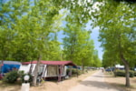 Piazzole - Camping Pitch - Domaine La Yole