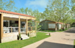 Locatifs - CHALET 2 chambres **** TV satellite - YELLOH! VILLAGE - MAS SANT JOSEP