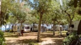Pitch - Pitch + tent , caravan or camping-car - International Camping Torre di Cerrano