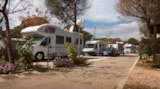 Pitch - Pitch (camping-car + electricity) - Camping Cabopino